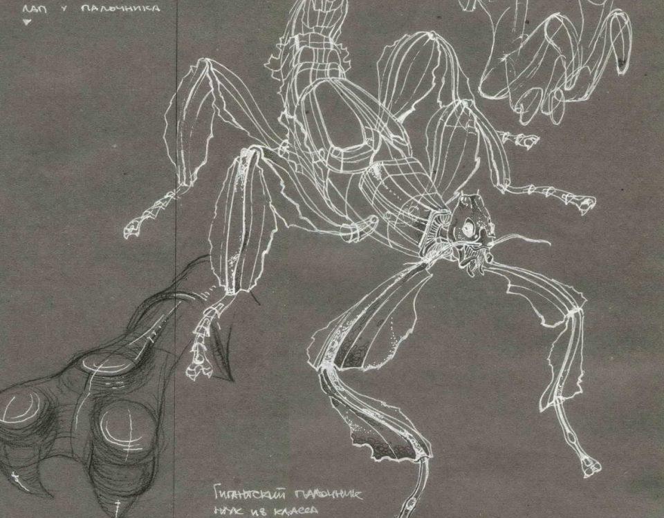 Рисунок жука. Гигантский палочник.