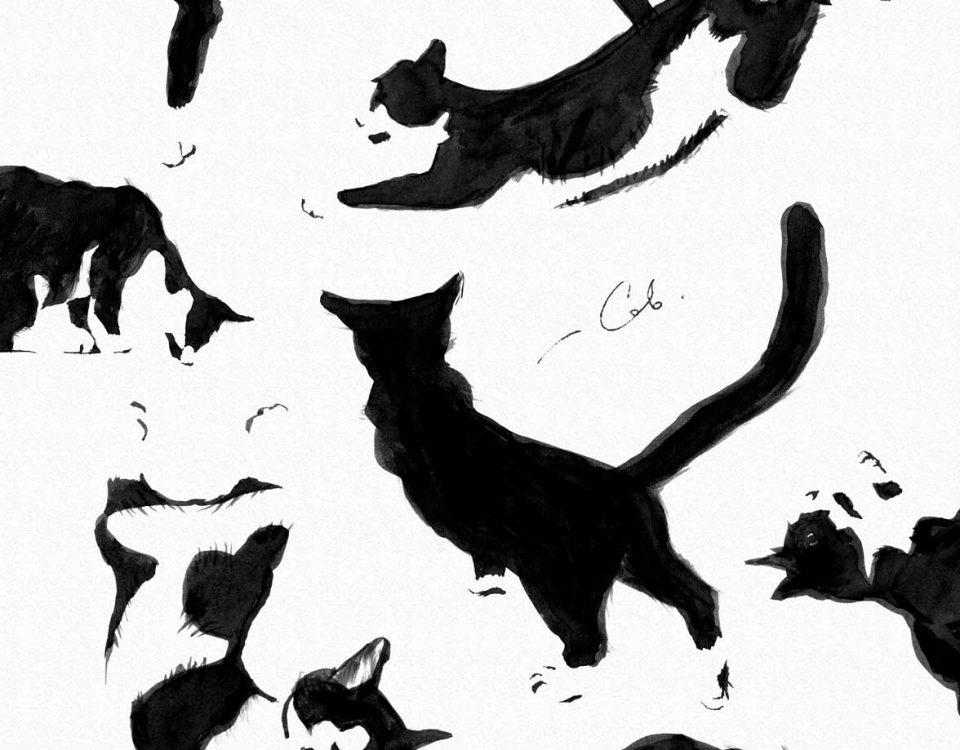 Косатики 2018, папера, туш, 70x90, кот, кошка