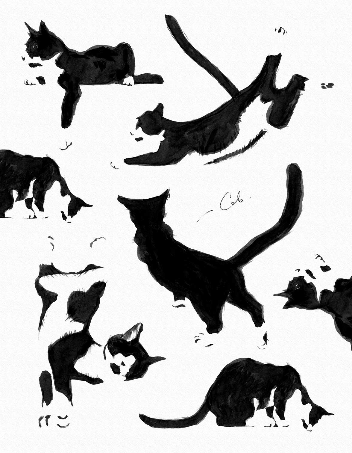 Kosatiki 2018, papir, blekk, 70x90, кот, katt