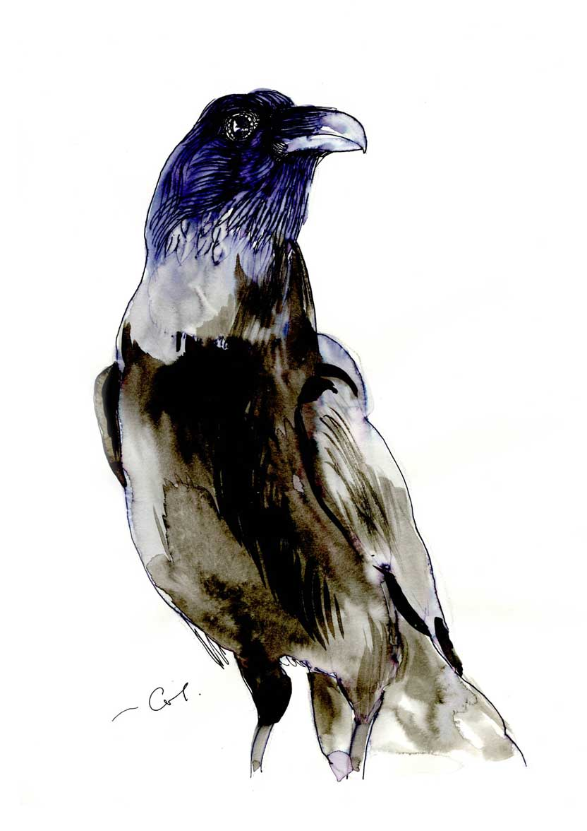 Raven mascara