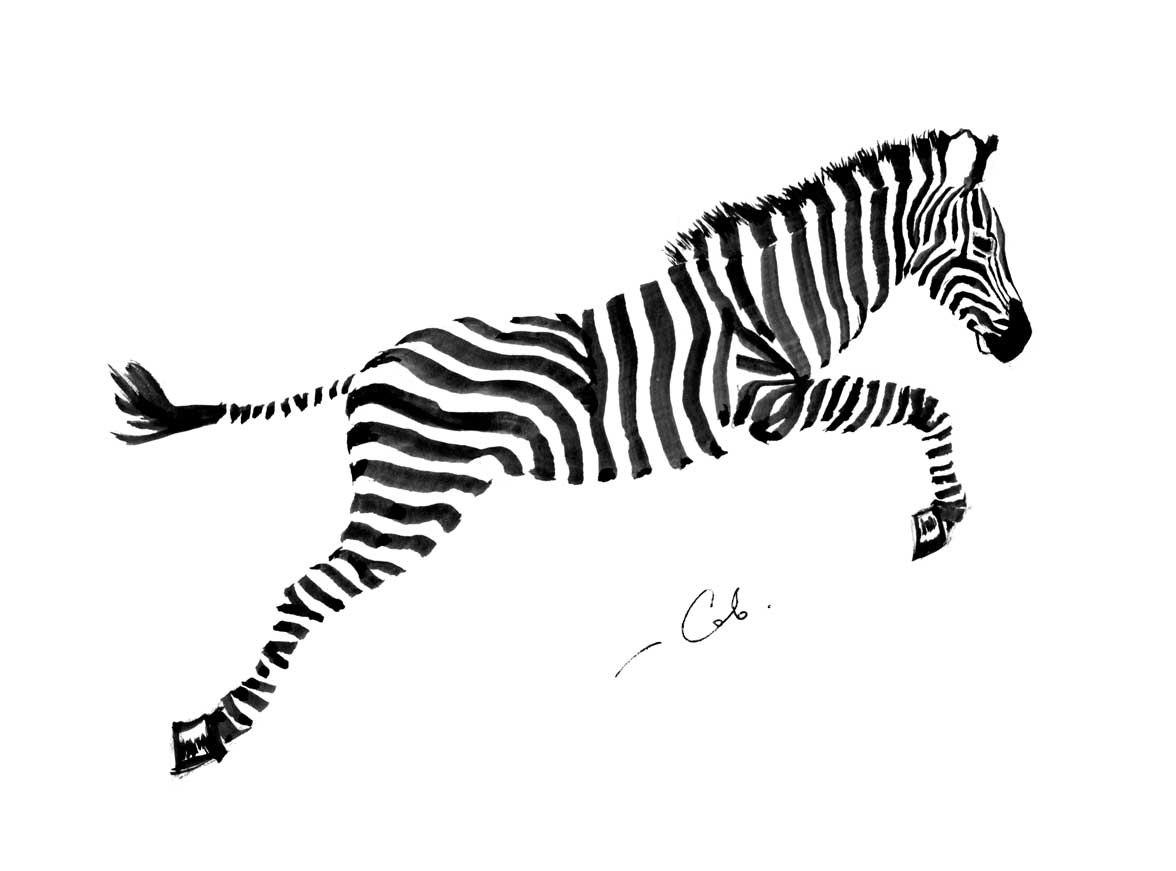 Zebra blekk tegning