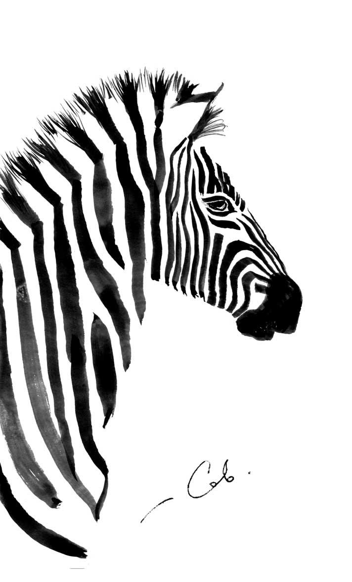 zebras, papir, blekk