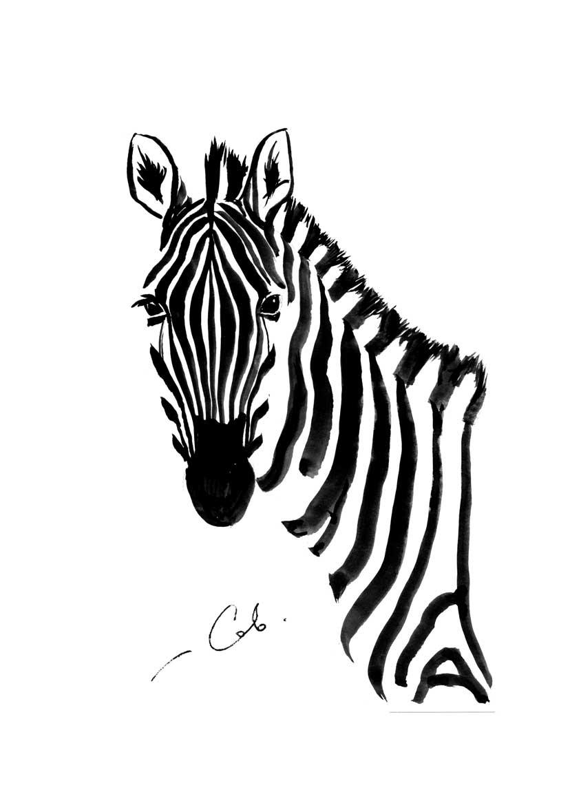 Рисунок зебры тушью