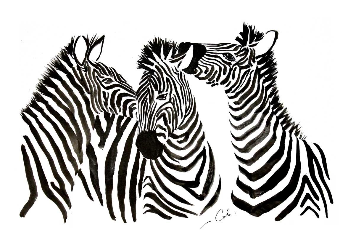 Зебры, бумага, тушь, формат А3